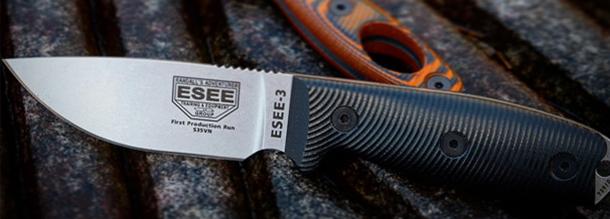 ESEE-3 2020