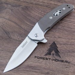 Нож Kershaw Rayne складной cталь 8Cr13MoV (K7402DC)